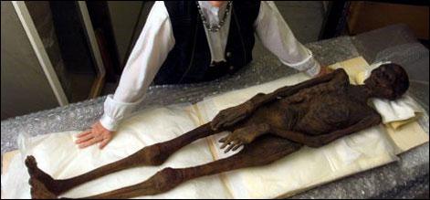 firon mummy